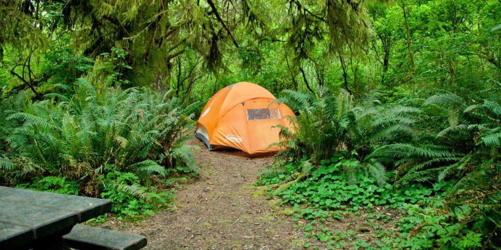 redwoodscaliforniacamping